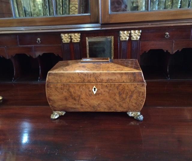 Sheraton Burl Walnut Bombe Tea Caddy