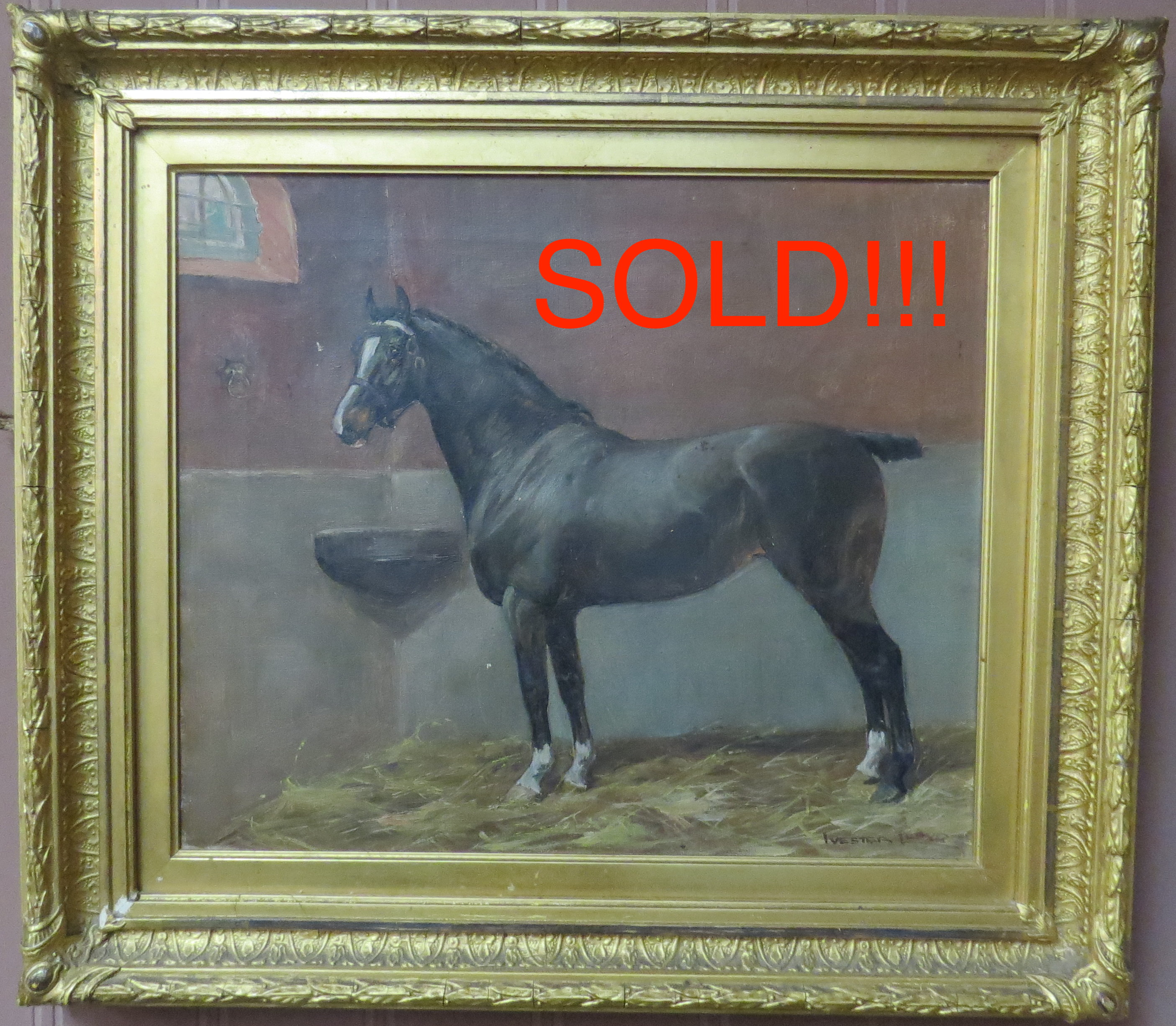 Oil on Canvas of a Stable Scene with a Race Horse, Signed Ivester Lloyd  (SOLD)
